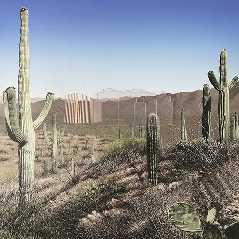 Nexus - Saguaro, AZ
