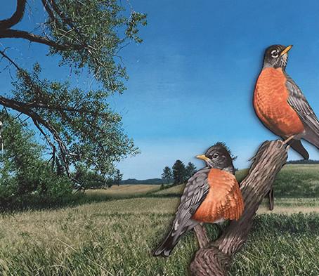 """Huffington Post hails Paiement's """"After Audubon, After Rivers"""" a mini masterpiece."""