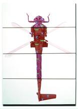 Zoniopoda Omnicopter