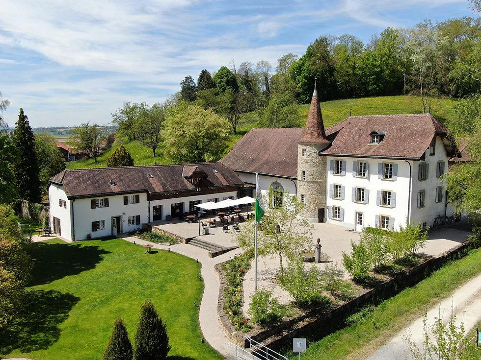 Château Salavaux from above.jpeg