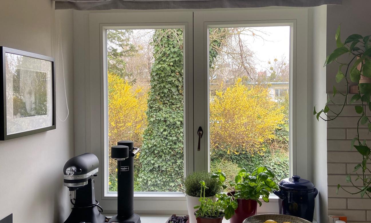 Lich-Sicht & Sonnenschutz für die Küche