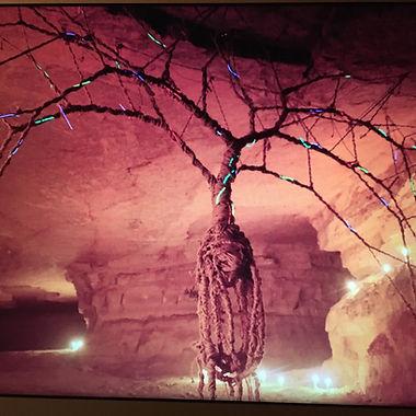 The illuminated tree.jpeg