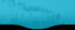 webinar page banner.png