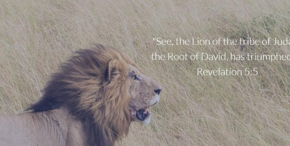 Lion of Rev 5.5 - Narrow 2
