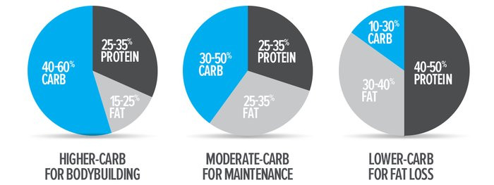 Graph showing Protein, Fats and Carbs.