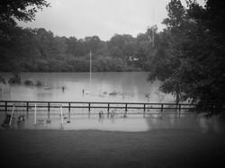 Receding Flood Water on Property 200