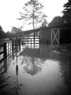 Receding Flood Water 2009