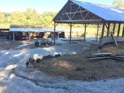 Roof on New Barn