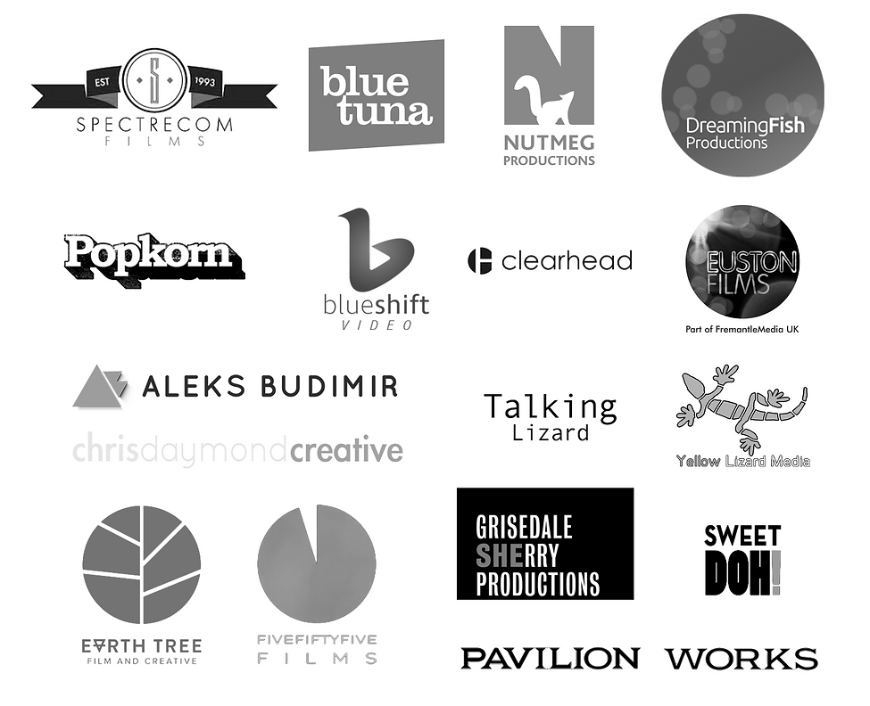 Companies Worked For 2.png