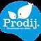 Prodijplein128.png