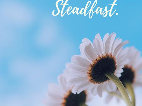 Steadfast.