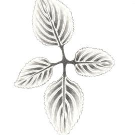 Four Leaf Cross.jpg