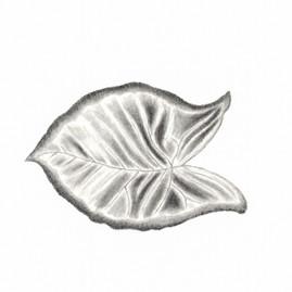 Textured Leaf.jpg