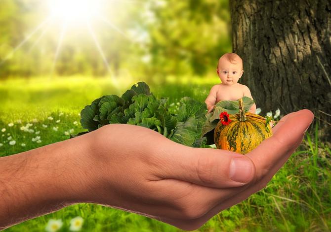 Питание в раннем возрасте важнее физкультуры
