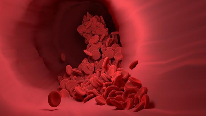 Скорость старения артерий зависит от рациона
