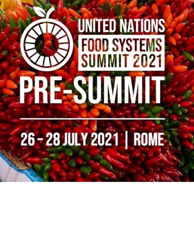 Предварительный саммит ООН по  продовольственным системам