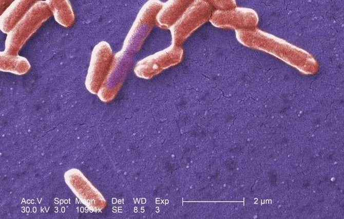 Микробиом - индикатор здоровья