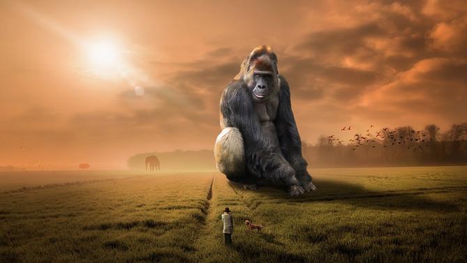 Почему люди толще обезьян?