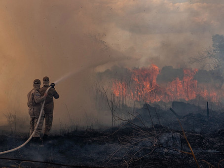 Burn, Baby, Burn! The Christian Silence around the Amazon Forest Fires