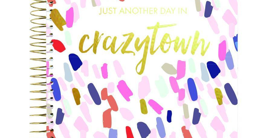 2019 Calendar-Just another day in crazy town