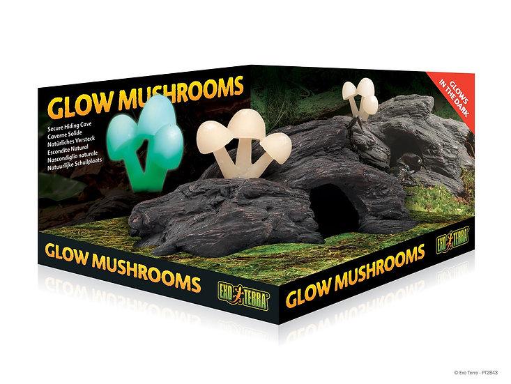 Glow Mushrooms ExoTerra
