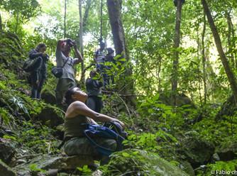 """Reserva de la Biosfera """"Calakmul"""" fue la sede el 5to NATURA"""