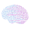 NT - Brain (No Background).png