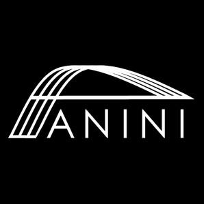 ANINI Designs