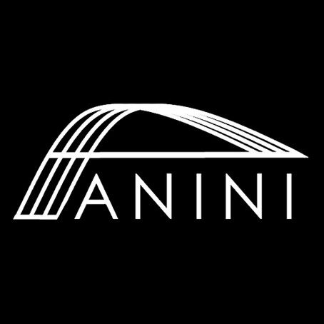 ANINI Designs :: All in a Name