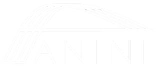 ANINI Designs logo - transparent.png