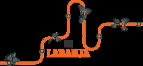 CLUBE LINHA LARANJA