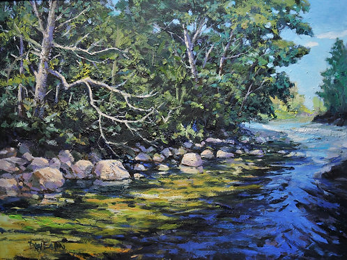 Trent River summer