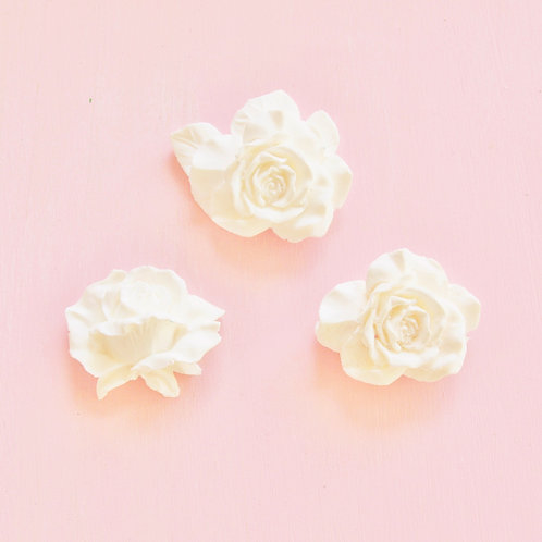 Three Pack of Roses
