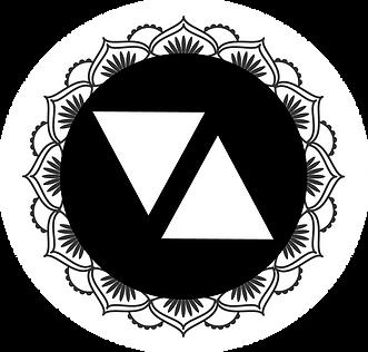 final vix logo3 (round).png