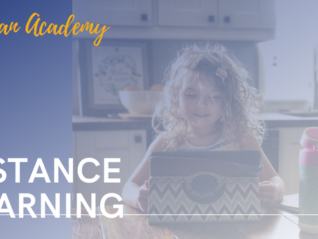 Berean Academy and Distance Learning