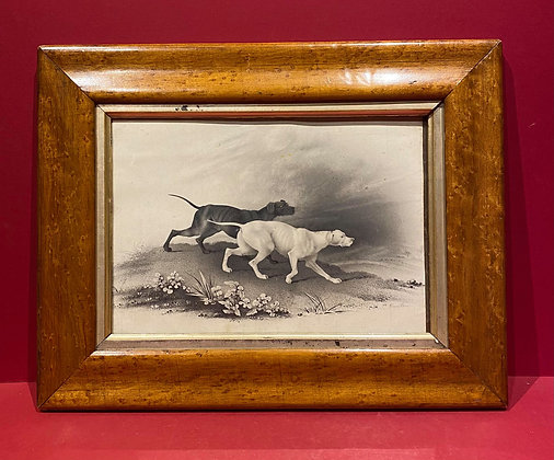 Victorian Drawing of Hunting Hounds