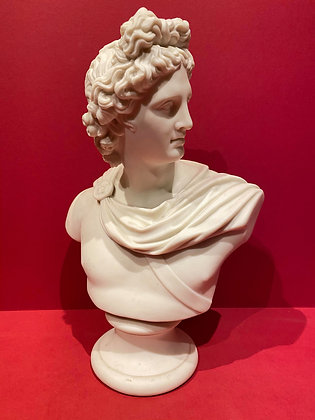 Classical Parian Bust of Apollo