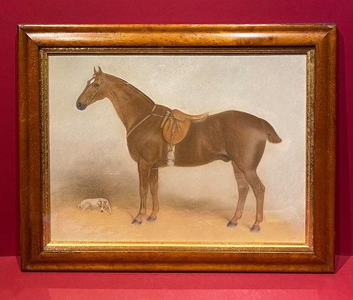 Watercolour of Horse framed in birds-eye maple