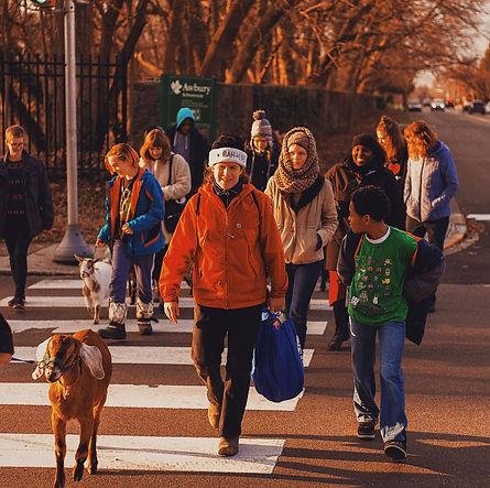 Karen leading goat walk.jpg