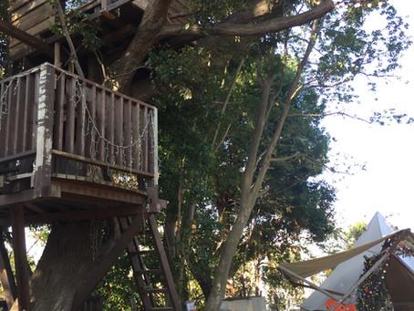 【イベントレポート】ReBoot Vol.3 〜大きな木のもとで未来の椿森コムナを考えよう〜