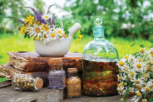 Arvigo Herbal Tinctures