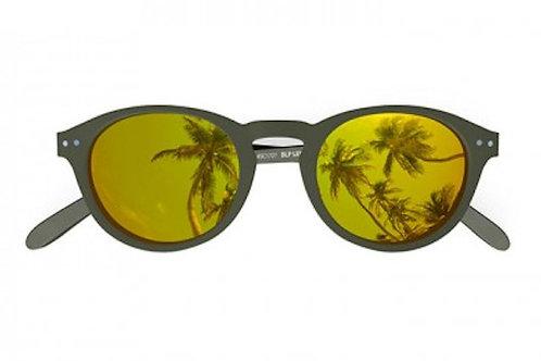 Blueberry Sunglasses L+, Khaki, Gold