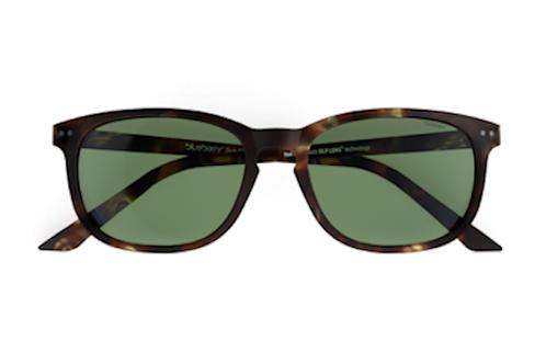 Blueberry Sunglasses XL, Tortoise, Green