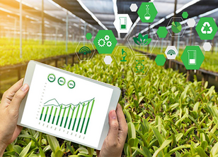 8 Ways Farmers — and the World — Benefit from AI and Machine Learning