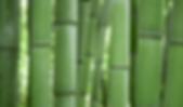 wood_element.jpg