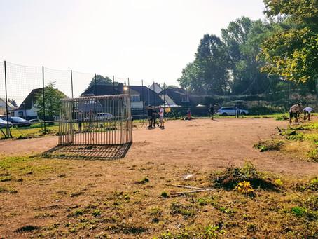 Bolzplatz Groß Börnecke hat's nötig