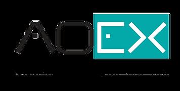 AOEX_CALIDAD_WEB_PNG.png