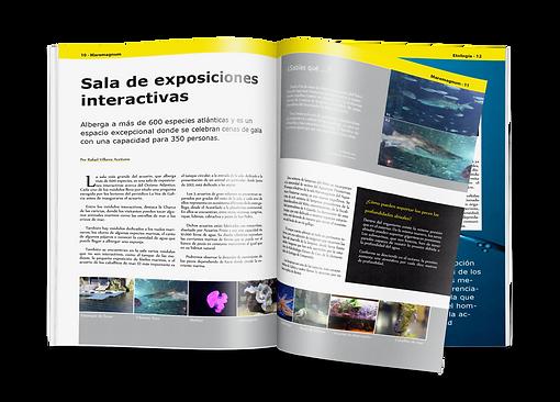 Servicios_Diseño-Editorial