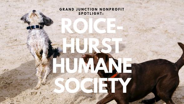Grand Junction Nonprofit Spotlight: Roice-Hurst Humane Society