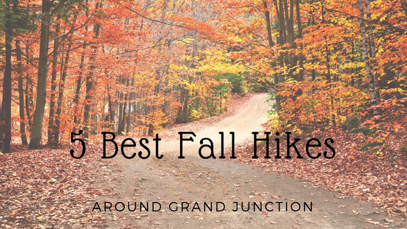 5 Best Fall Hikes Around Grand Junction